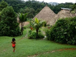 work,study and volunteering in panama