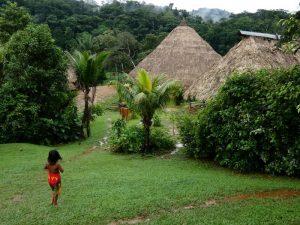 work,study and volunteering in panama