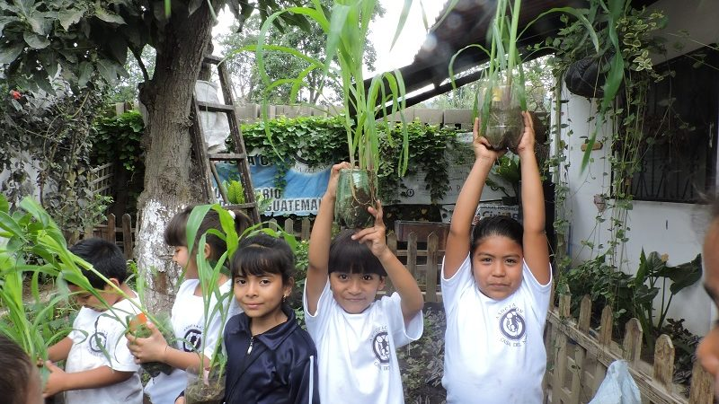 orchard kids school volunteer in guatemala