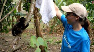 voluntaria cuido animales