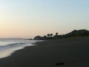 playa de anidación de tortugas
