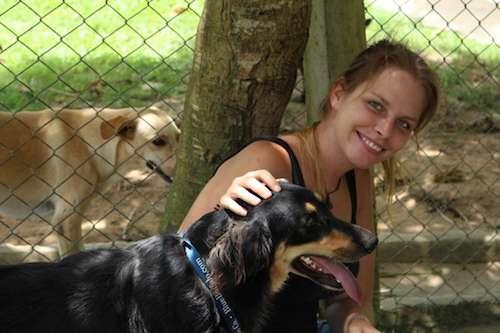 refugio de animales en  veterinaria
