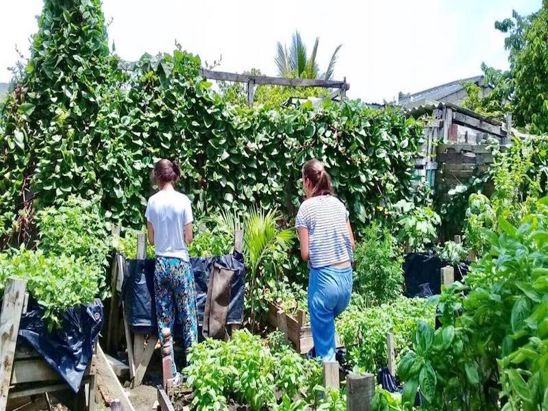 Voluntariado en patios productivos en Colombia