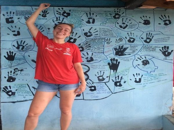 experience with sea turtles voluntering