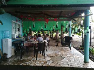 voluntariado-en-el-extranjero-con-tortugas-marinas-panamá