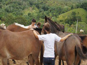 República dominicana, una parada obligatoria