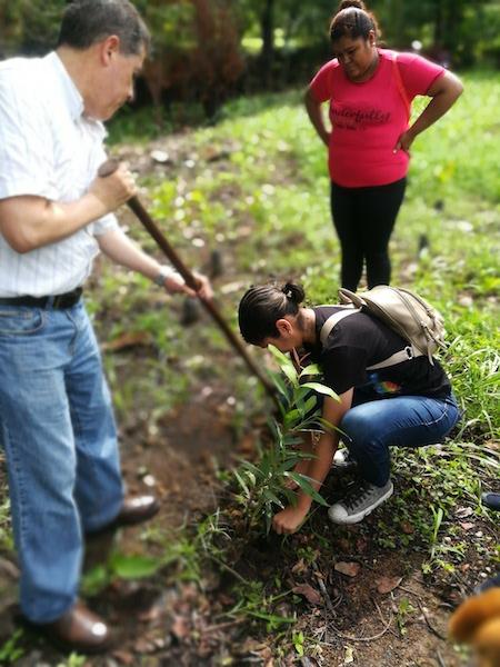 trabajo-en-equipo-voluntariado