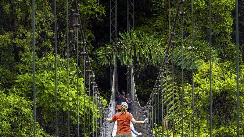 suspension bridge rides in Costa Rica