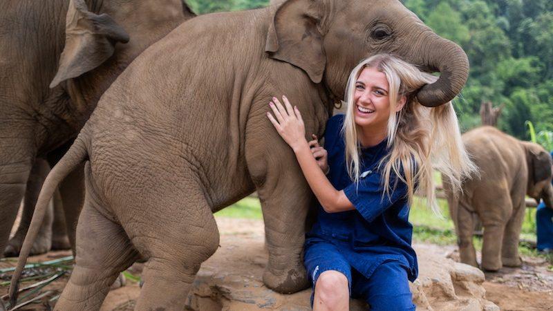 Razones para ser parte de un proyecto de voluntariado con Elefantes