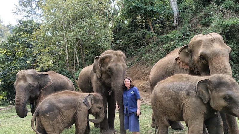 Tailandia voluntariado en solitario
