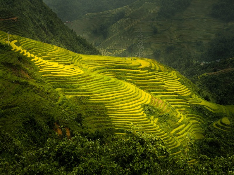 vietnam Sa Pa