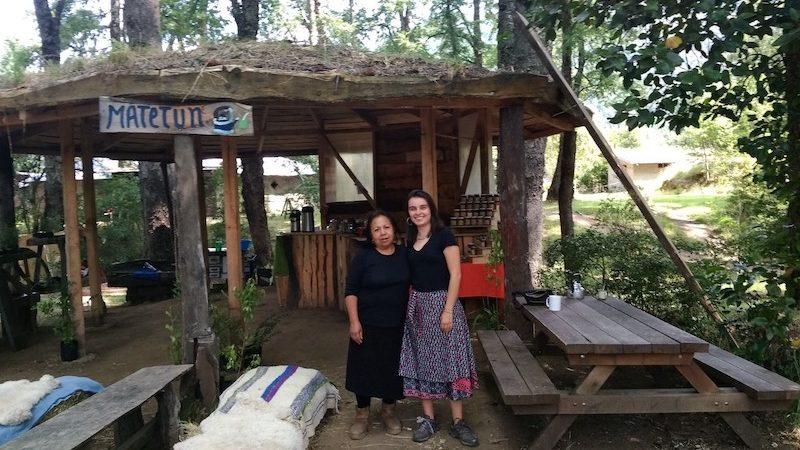 Familias mapuches