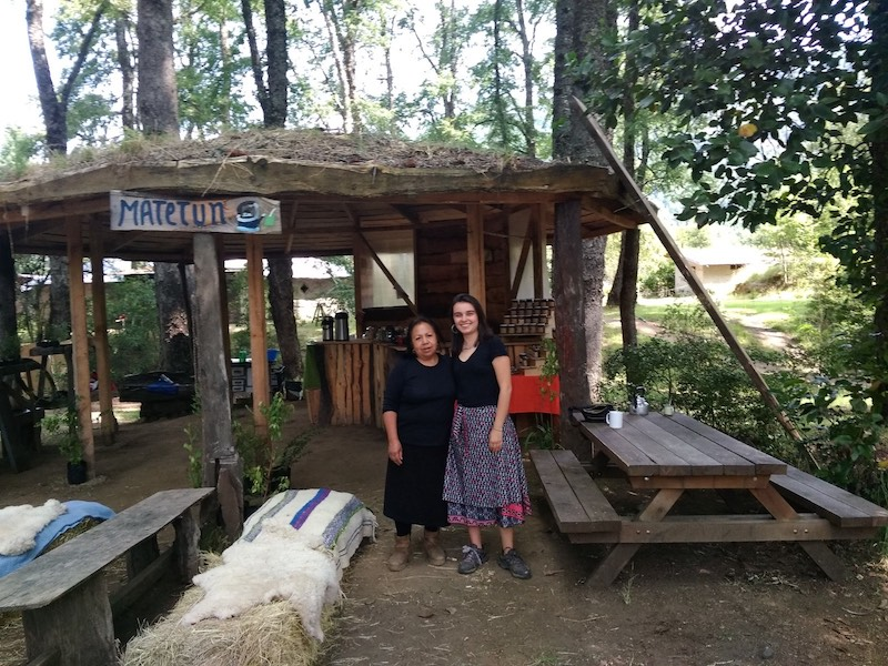 Mapuche families
