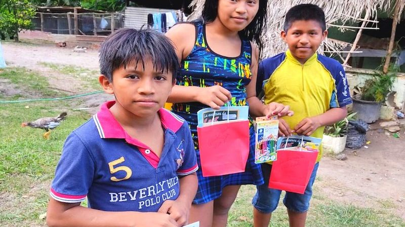 Refuerzo escolar en panamá